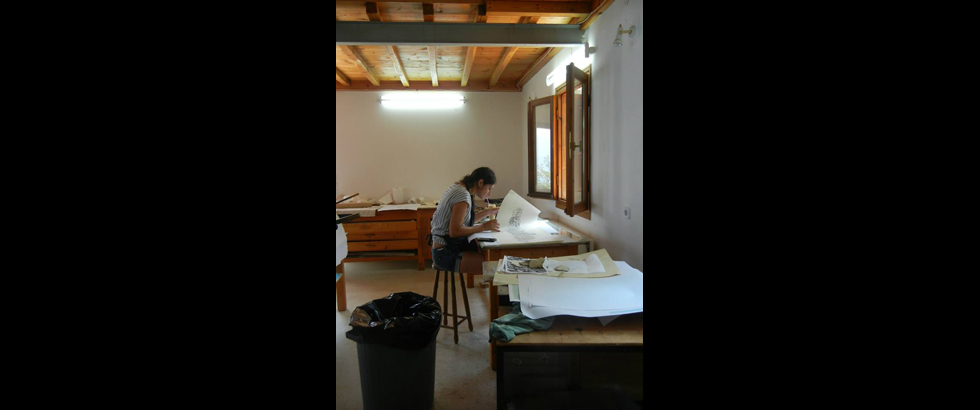 The Skopelos Foundation for the Arts's Artist