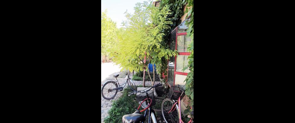 紅門國際駐地計畫園區