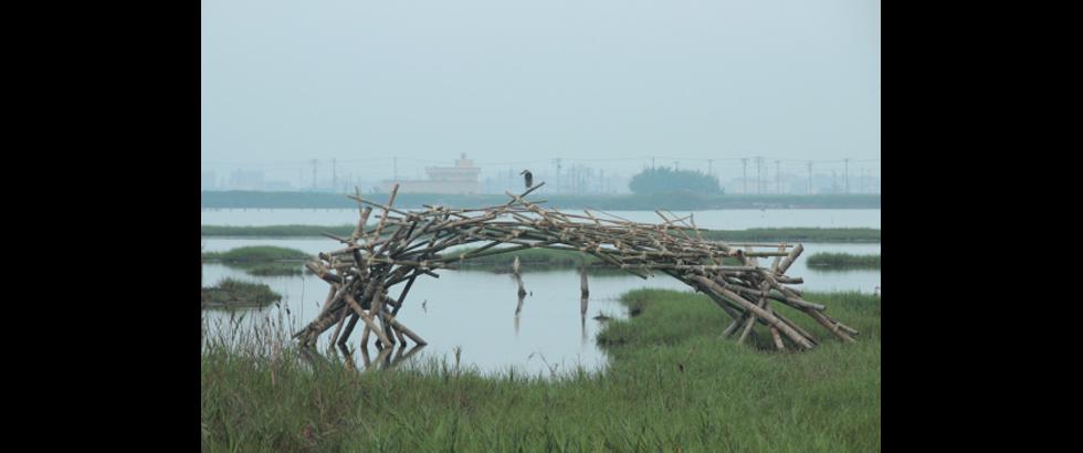 Cheng Long Wetlands International Art Project's Exhibition Status