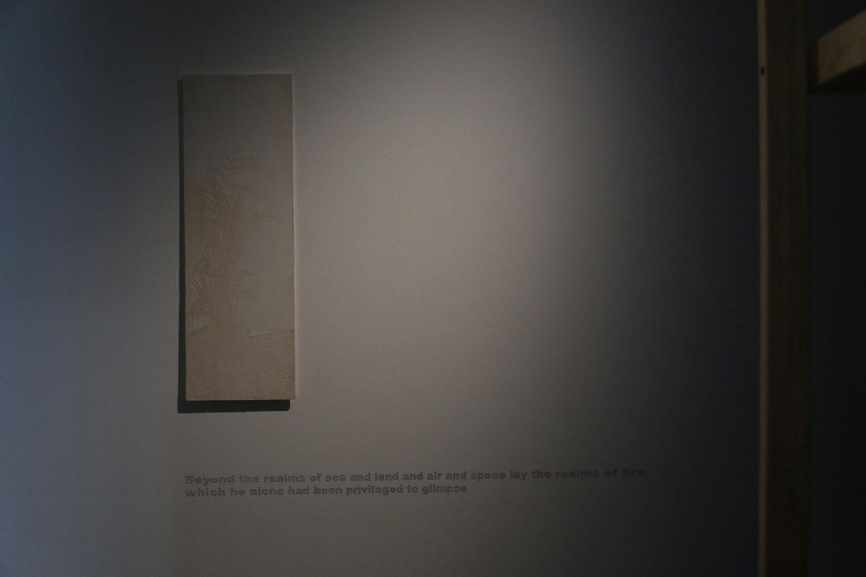 Phototaxis Exhibition
